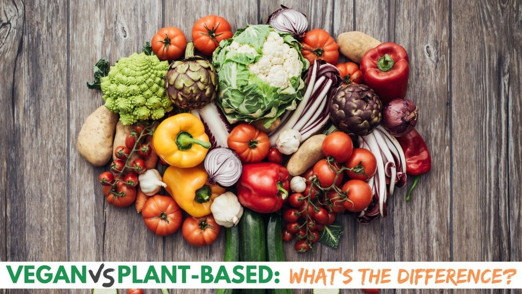 Vegan vs Plant-based: What's The Difference?